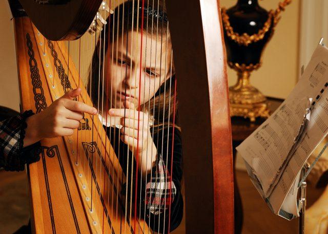 harp lessons bruce music