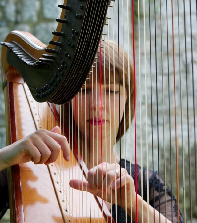 harp teachers London - Bruce Music